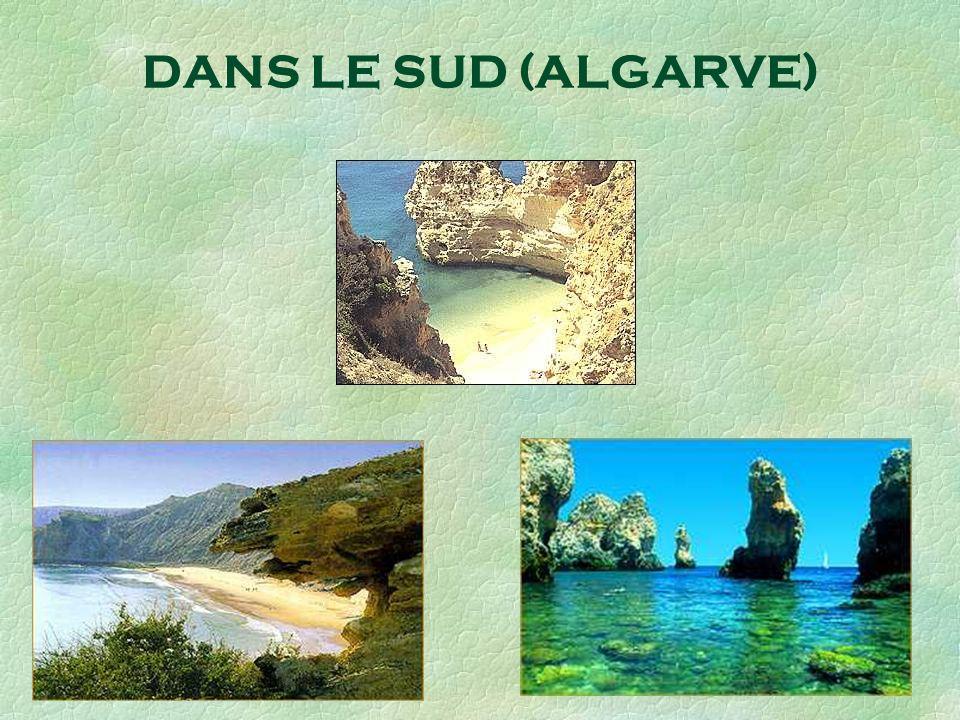 DANS LE SUD (ALGARVE)
