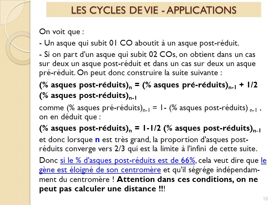 LES CYCLES DE VIE - APPLICATIONS