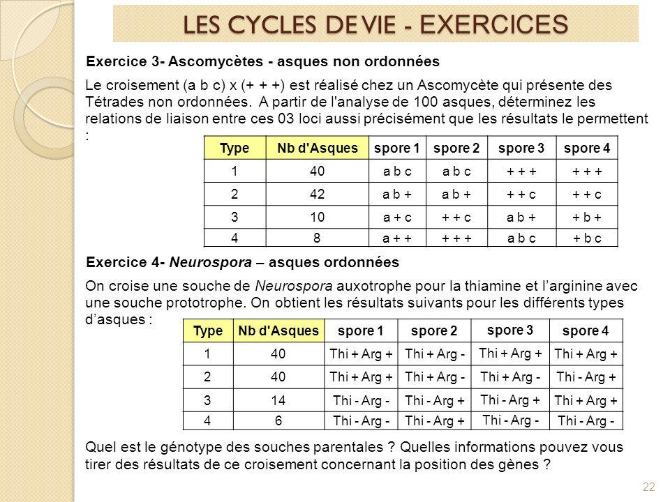 LES CYCLES DE VIE - EXERCICES