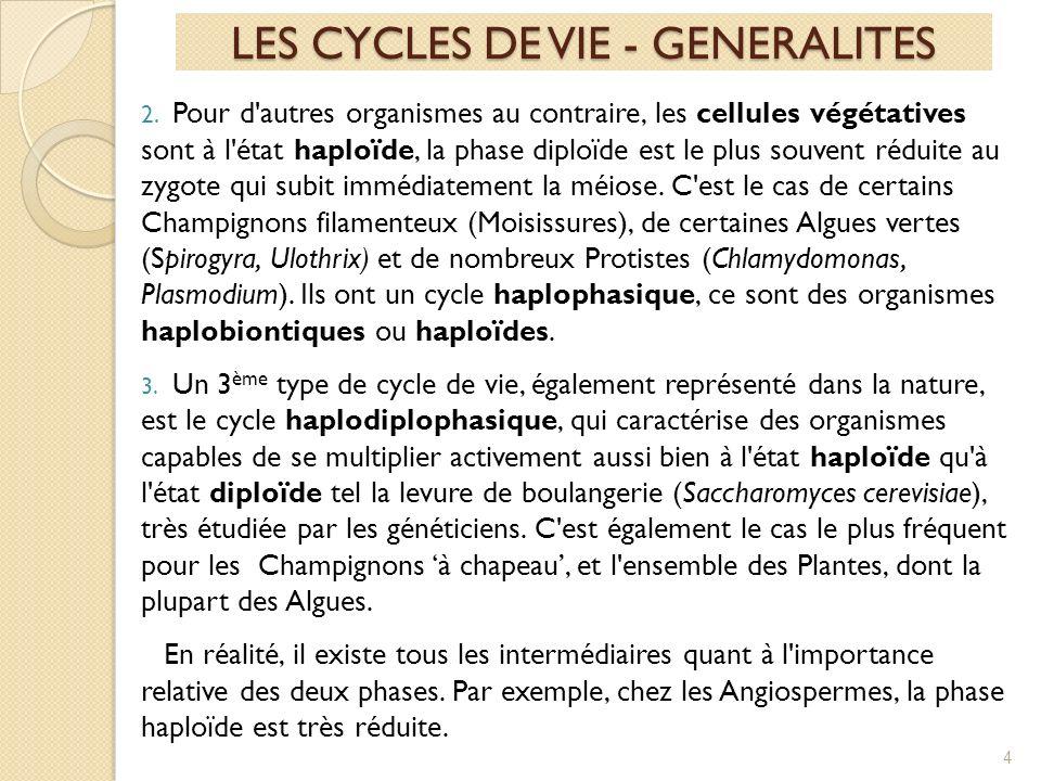 LES CYCLES DE VIE - GENERALITES