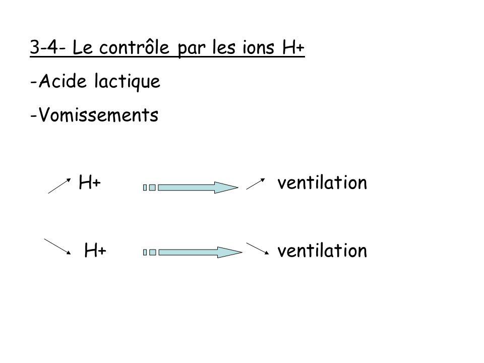 3-4- Le contrôle par les ions H+ Acide lactique Vomissements