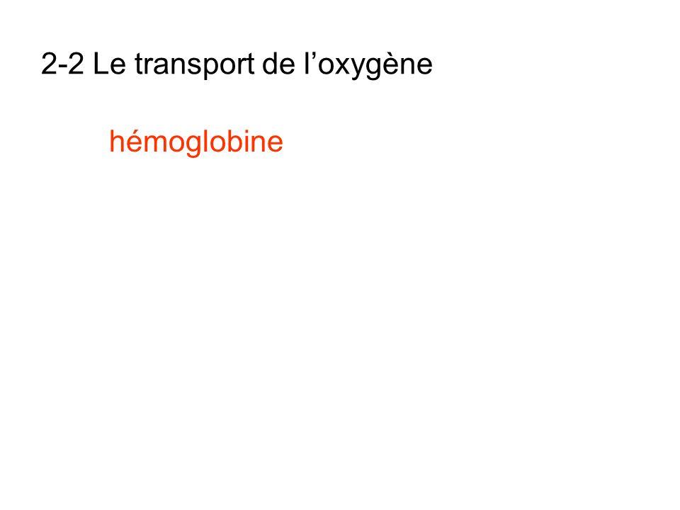 2-2 Le transport de l'oxygène