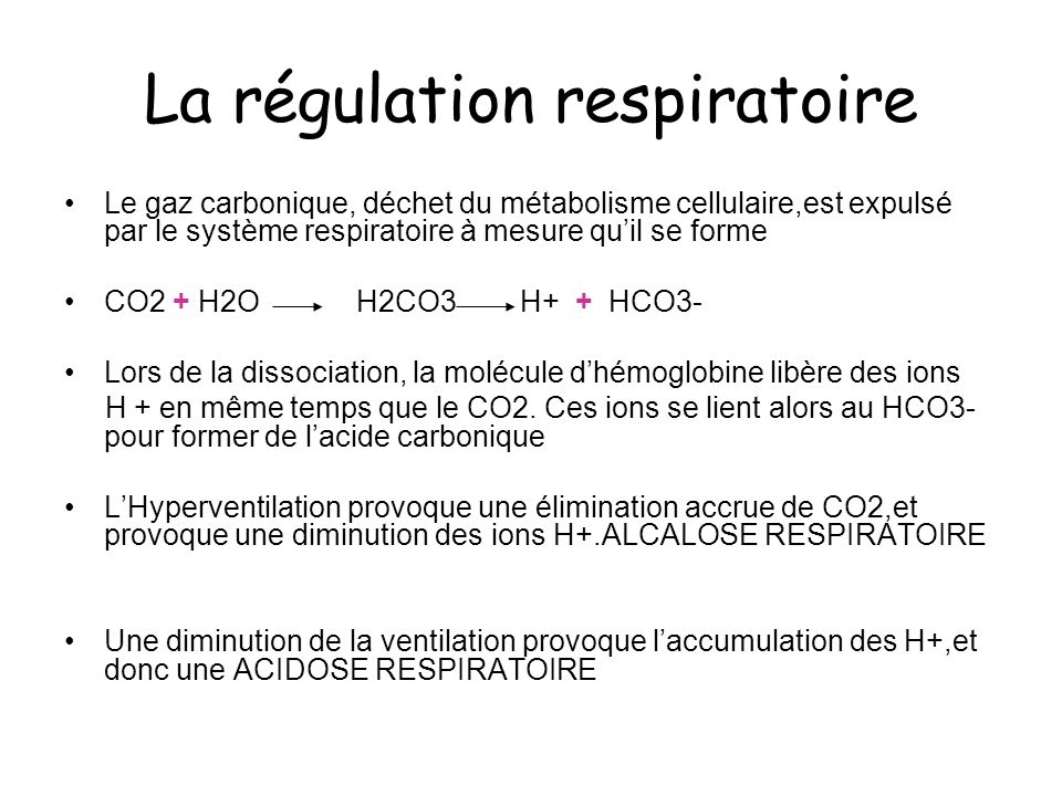La régulation respiratoire