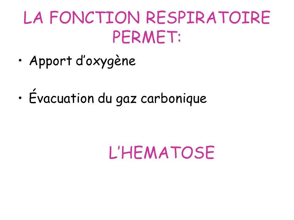 LA FONCTION RESPIRATOIRE PERMET: