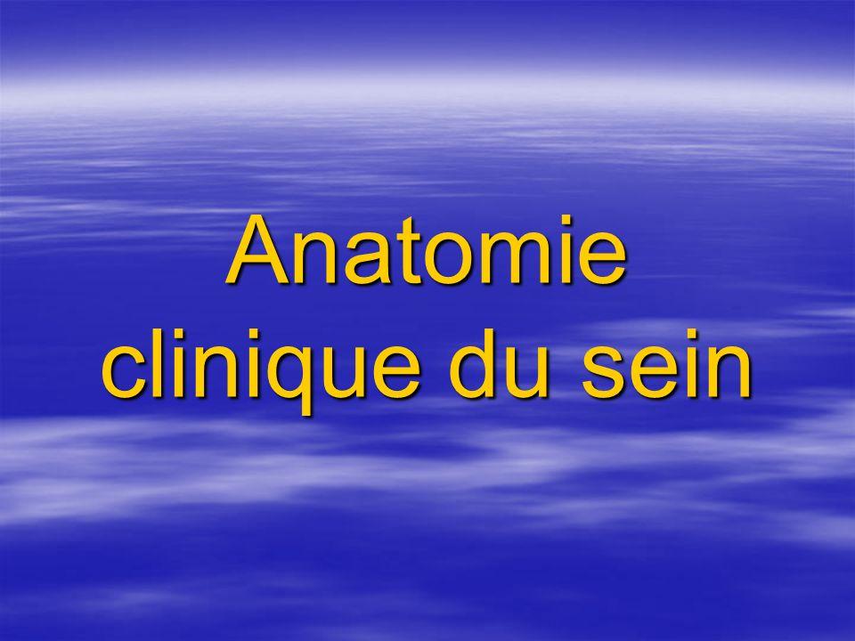 Anatomie clinique du sein