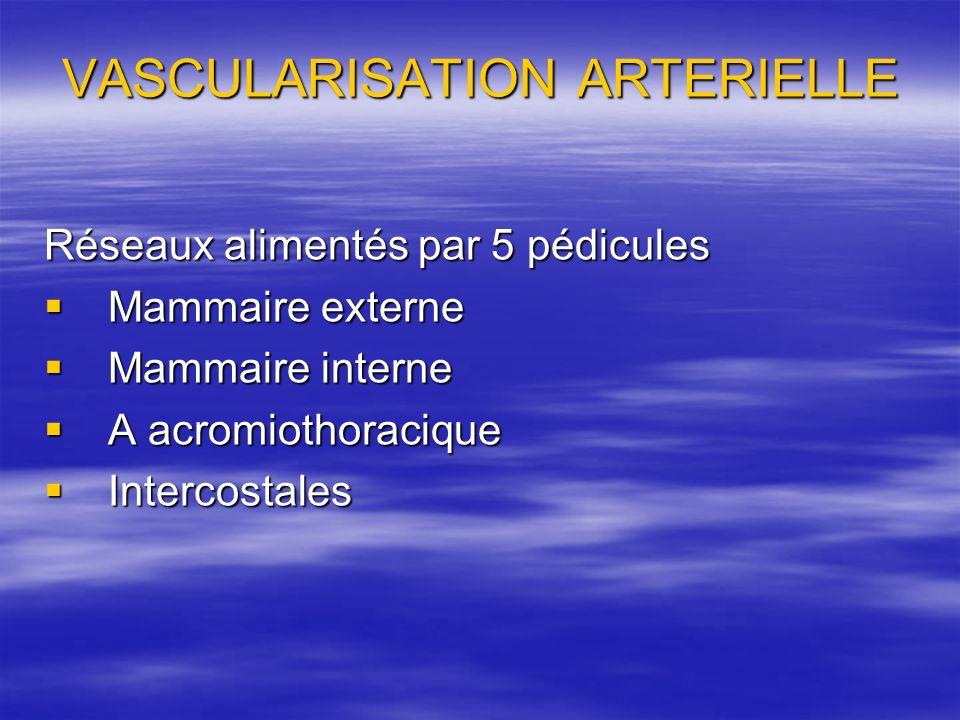 VASCULARISATION ARTERIELLE