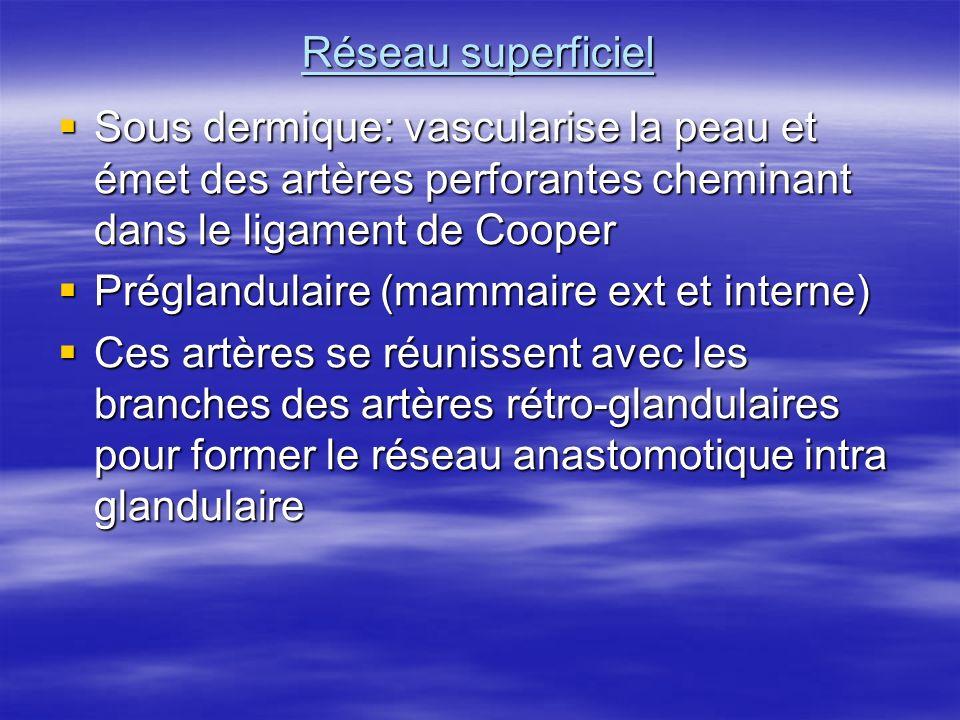 Réseau superficiel Sous dermique: vascularise la peau et émet des artères perforantes cheminant dans le ligament de Cooper.