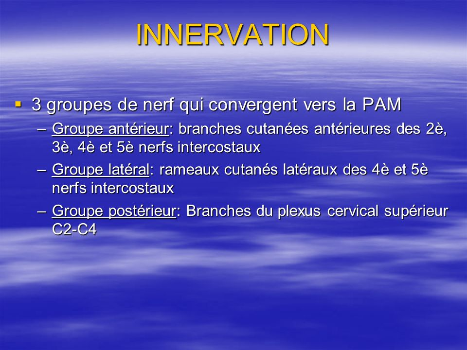 INNERVATION 3 groupes de nerf qui convergent vers la PAM
