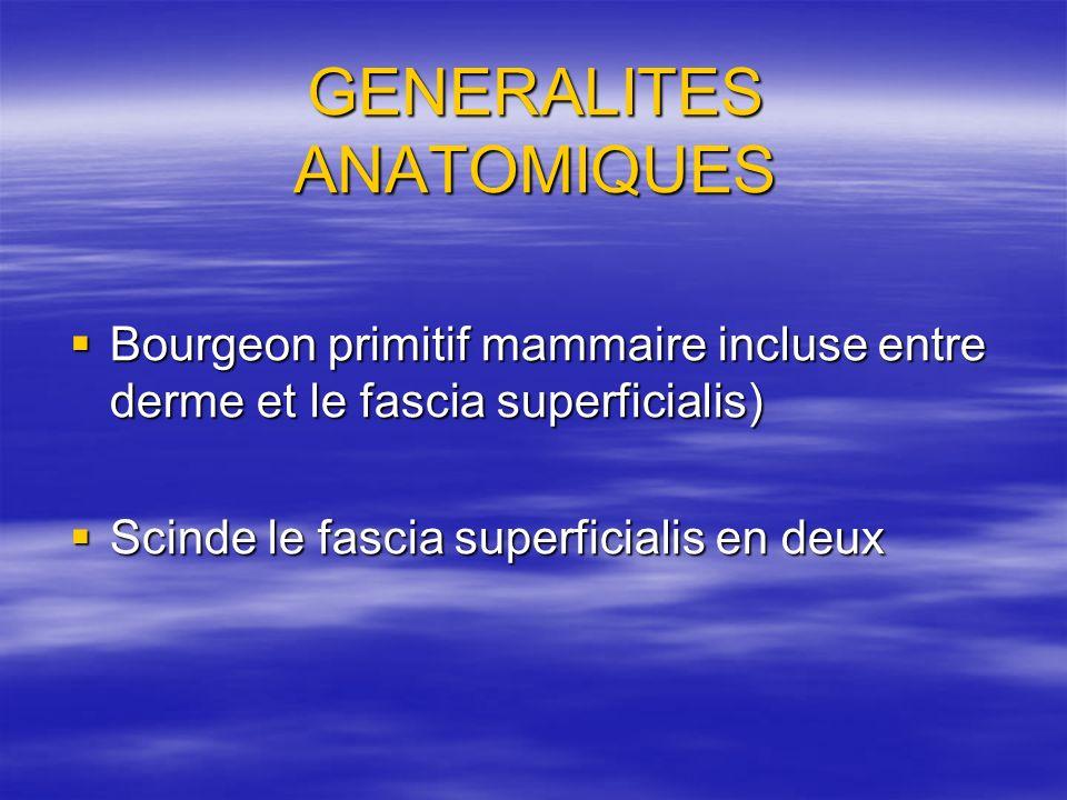 GENERALITES ANATOMIQUES