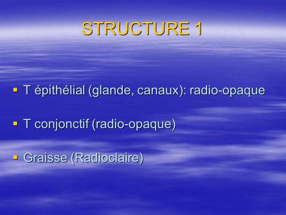 STRUCTURE 1 T épithélial (glande, canaux): radio-opaque