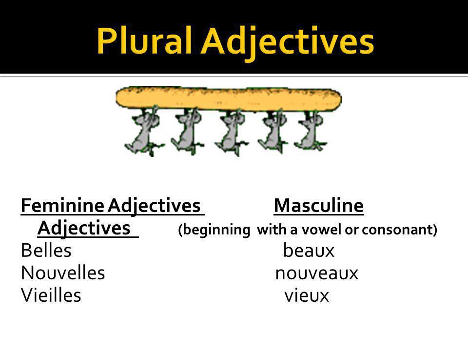 Plural Adjectives Feminine Adjectives Masculine Adjectives (beginning with a vowel or consonant) Belles beaux Nouvelles nouveaux Vieilles vieux