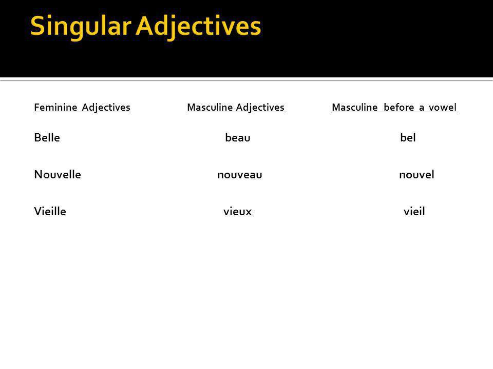 Singular Adjectives Belle beau bel Nouvelle nouveau nouvel
