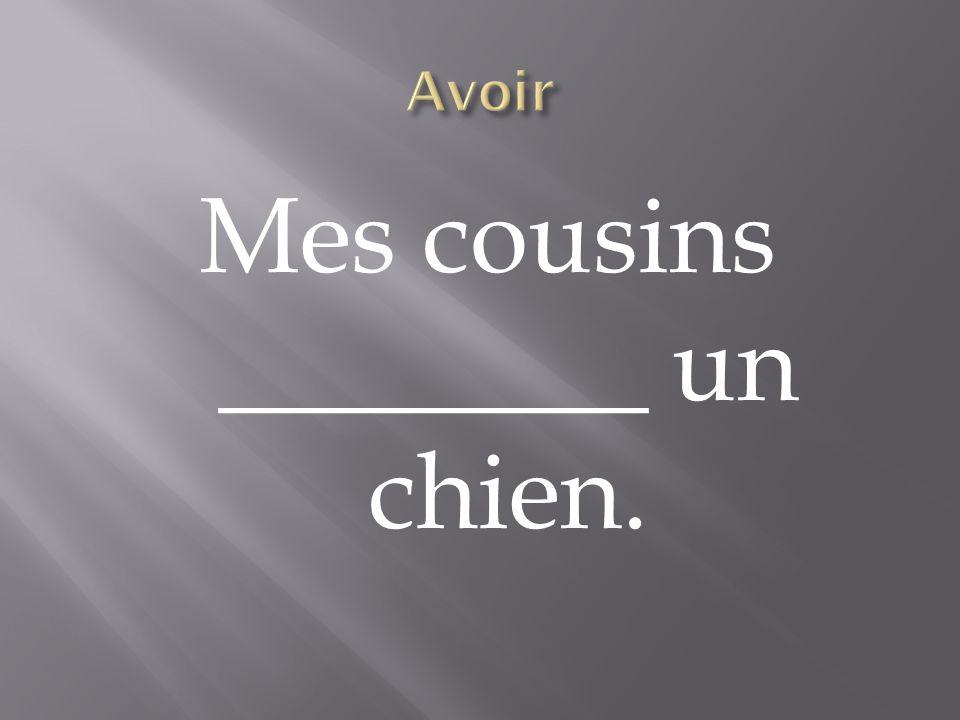 Mes cousins ________ un chien.