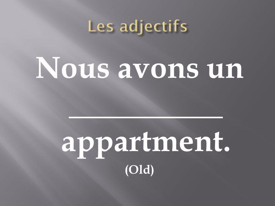 Nous avons un __________ appartment.