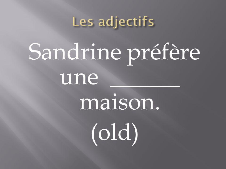 Sandrine préfère une ______ maison. (old)