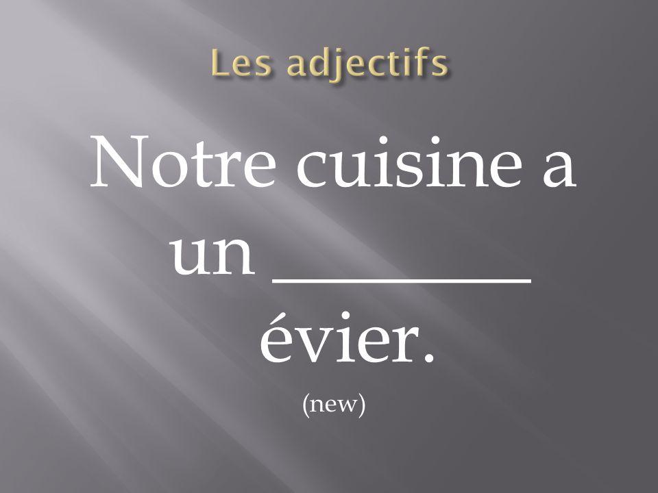Notre cuisine a un _______ évier.
