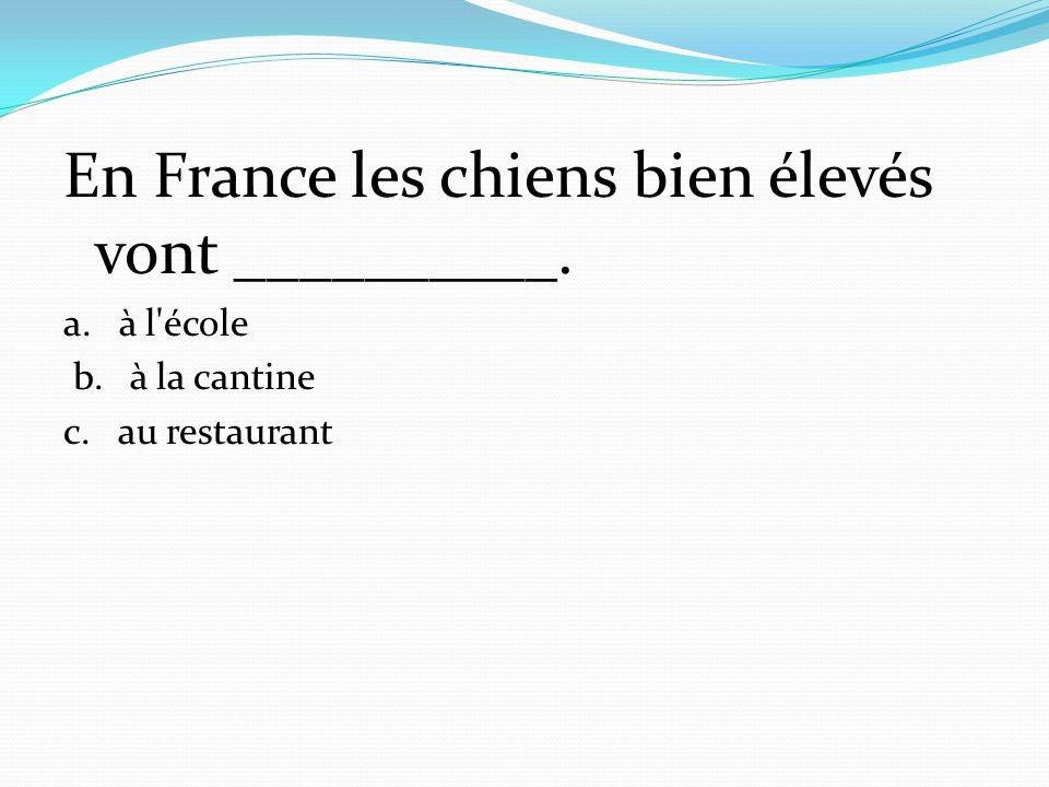 En France les chiens bien élevés vont __________.