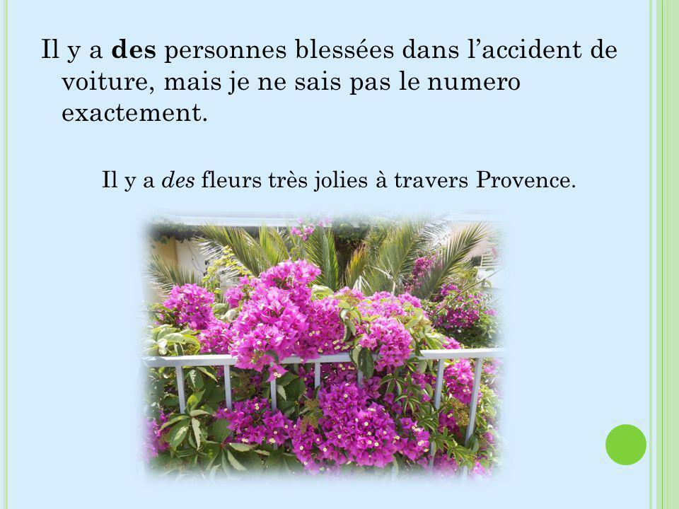 Il y a des fleurs très jolies à travers Provence.