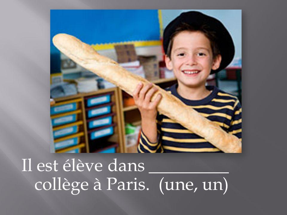 Il est élève dans _________ collège à Paris. (une, un)
