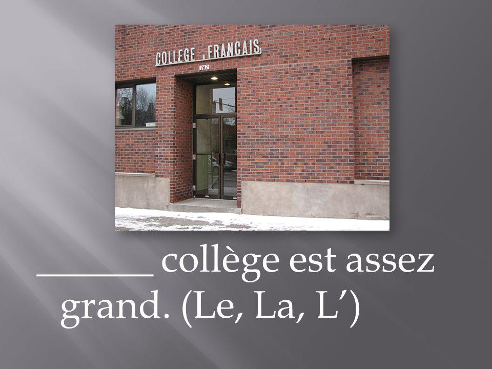 ______ collège est assez grand. (Le, La, L')