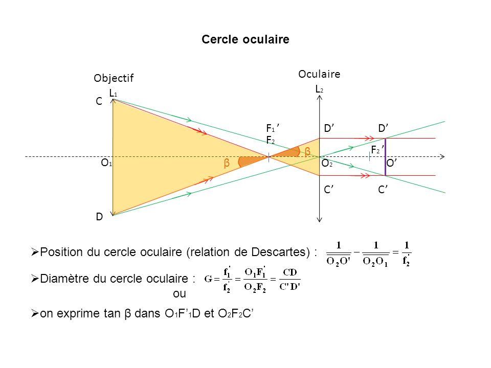 Cercle oculaireO2. F2. F2 ' Oculaire L2. F1 ' O1. Objectif L1. C. D. C' D' C' D' O' β. β. Position du cercle oculaire (relation de Descartes) :
