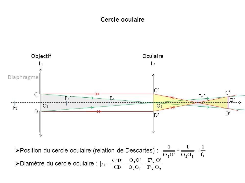 Cercle oculaire F1 ' F1. O1. Objectif L1. O2. F2. F2 ' Oculaire L2. Diaphragme. C. D. C'
