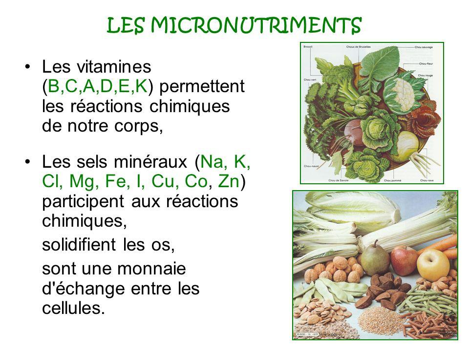 LES MICRONUTRIMENTS Les vitamines (B,C,A,D,E,K) permettent les réactions chimiques de notre corps,