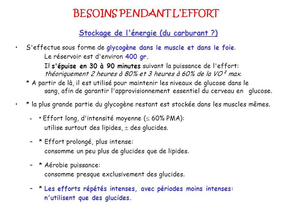 BESOINS PENDANT L'EFFORT