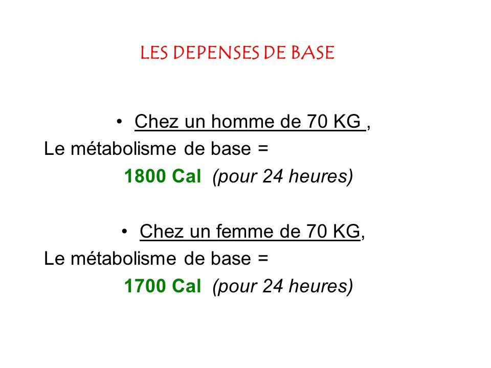 LES DEPENSES DE BASE Chez un homme de 70 KG , Le métabolisme de base = 1800 Cal (pour 24 heures)