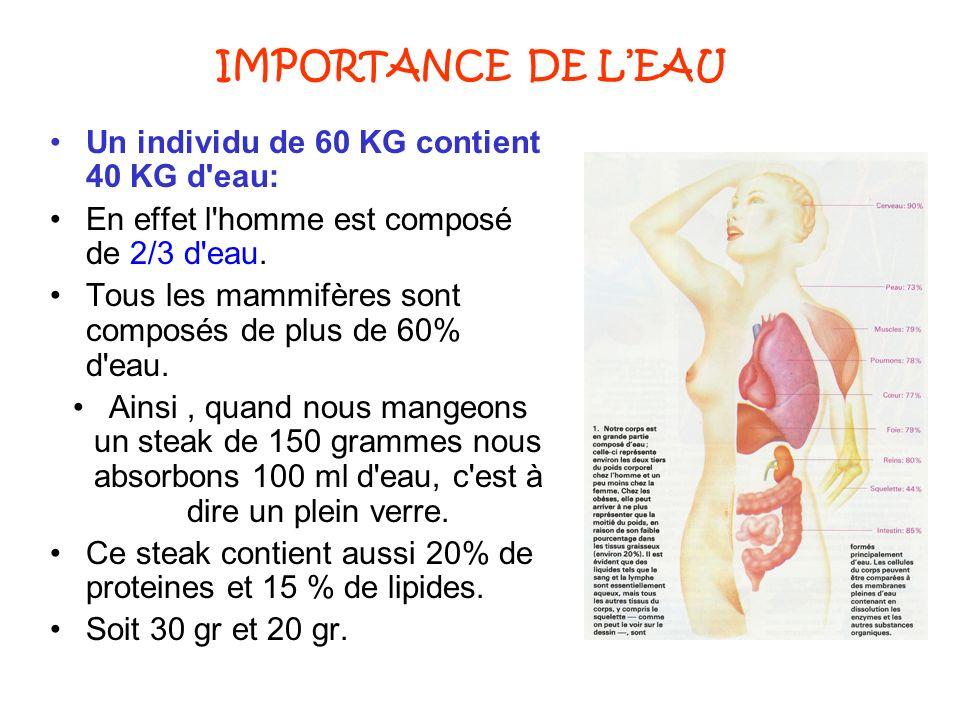 IMPORTANCE DE L'EAU Un individu de 60 KG contient 40 KG d eau: