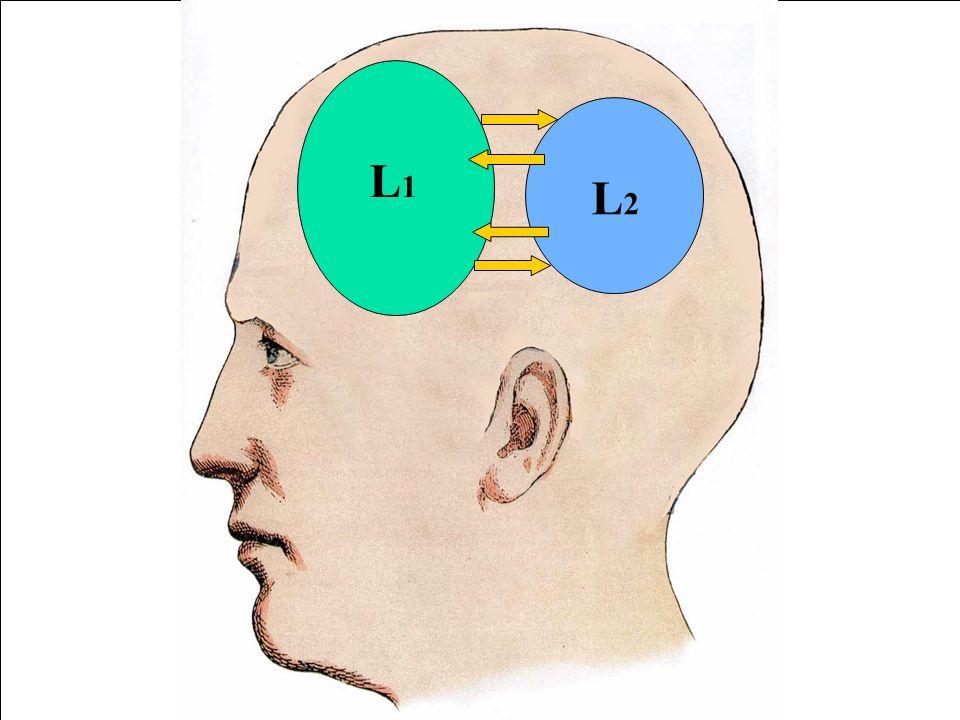 L1 L1. L1. L2. L1. L2. L1. L2. L2.
