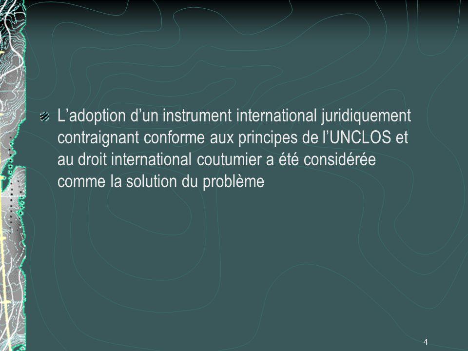 L'adoption d'un instrument international juridiquement contraignant conforme aux principes de l'UNCLOS et au droit international coutumier a été considérée comme la solution du problème