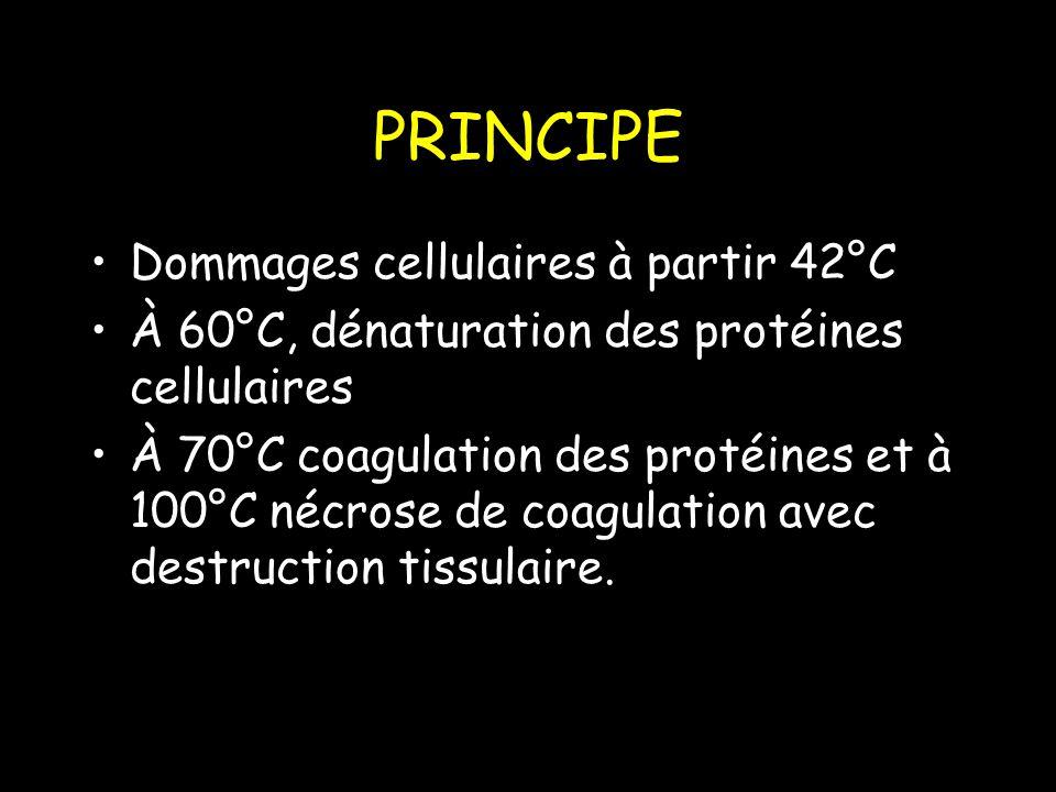 PRINCIPE Dommages cellulaires à partir 42°C