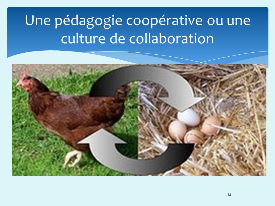 Une pédagogie coopérative ou une culture de collaboration