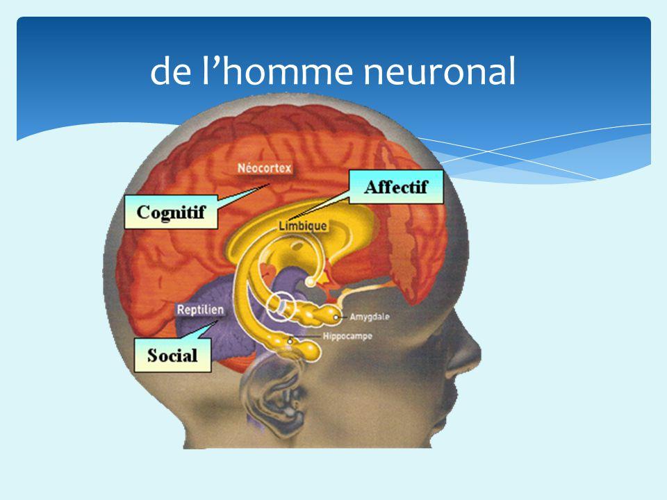 de l'homme neuronal