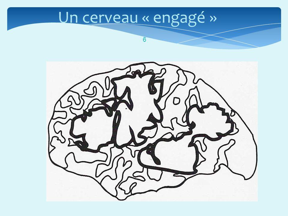 Un cerveau « engagé »