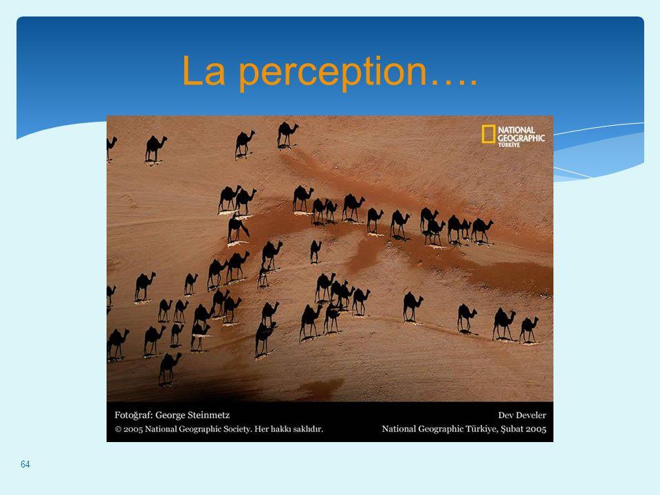 La perception….