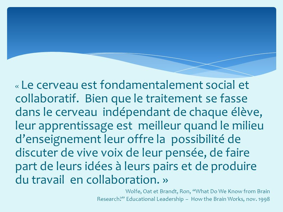 « Le cerveau est fondamentalement social et collaboratif