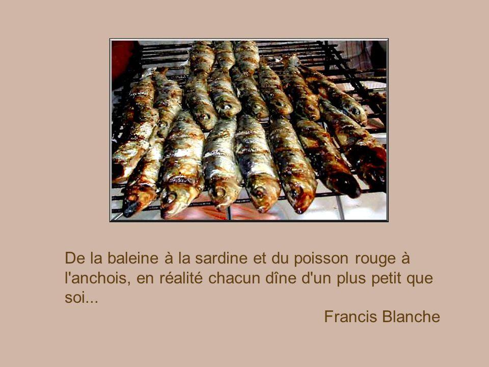 De la baleine à la sardine et du poisson rouge à l anchois, en réalité chacun dîne d un plus petit que soi...