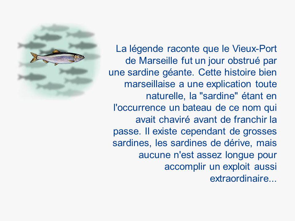La légende raconte que le Vieux-Port de Marseille fut un jour obstrué par une sardine géante.