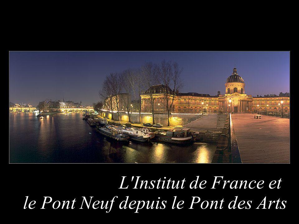 L Institut de France et le Pont Neuf depuis le Pont des Arts