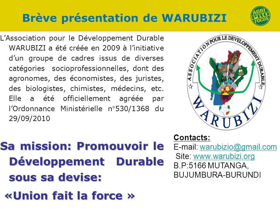 Brève présentation de WARUBIZI