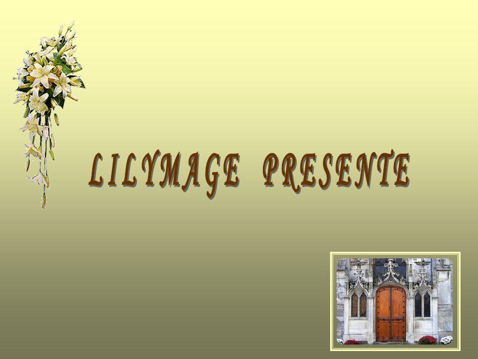 LILYMAGE PRESENTE