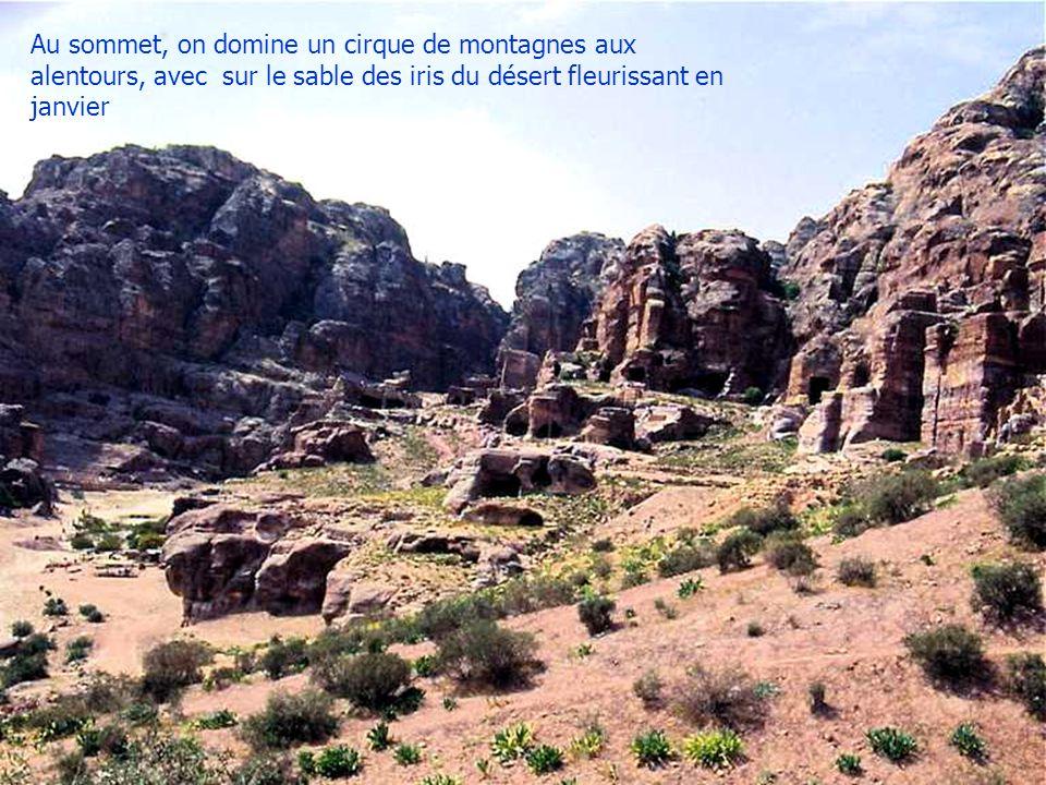 Au sommet, on domine un cirque de montagnes aux alentours, avec sur le sable des iris du désert fleurissant en janvier