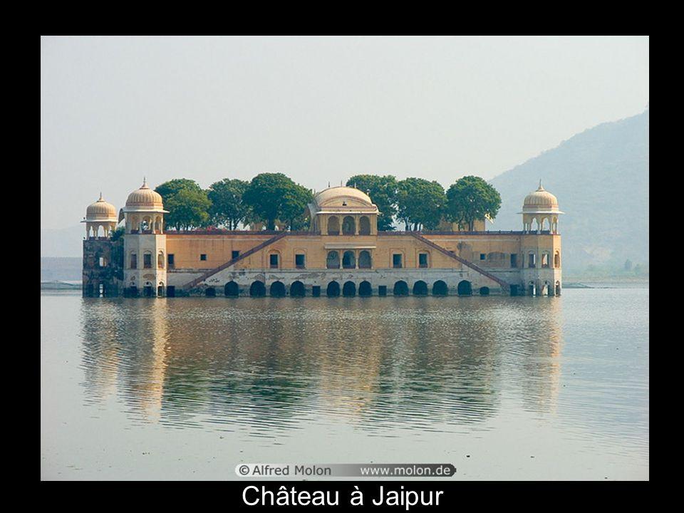 Château à Jaipur
