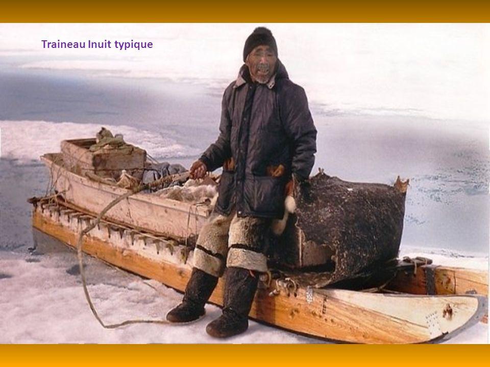 Traineau Inuit typique