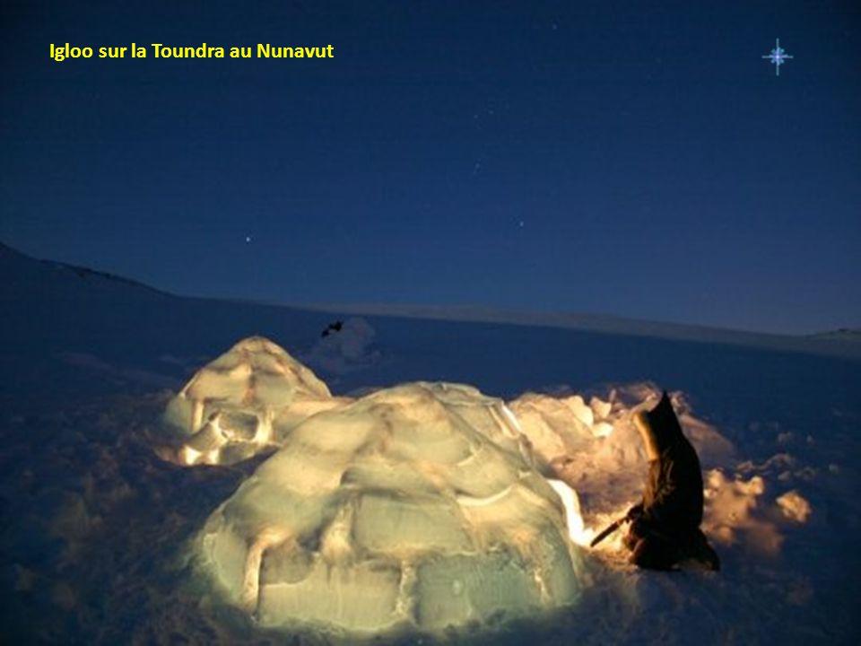 Igloo sur la Toundra au Nunavut