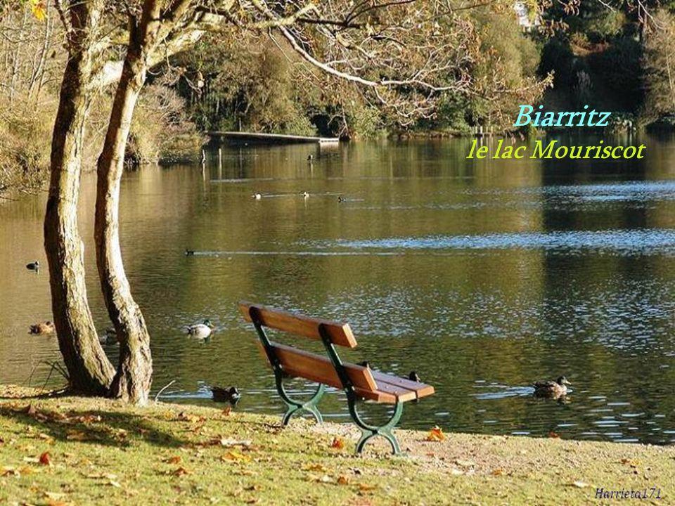 Biarritz le lac Mouriscot