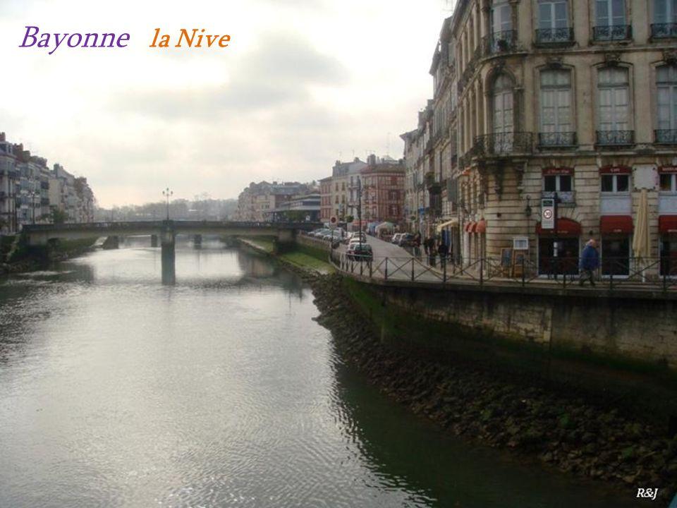 Bayonne la Nive