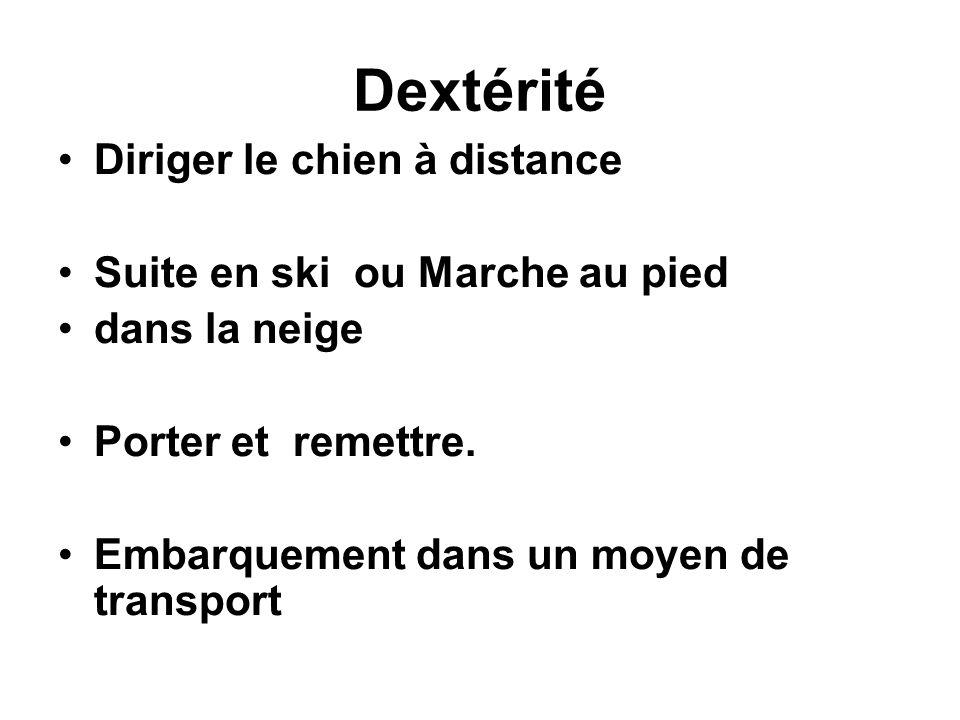 Dextérité Diriger le chien à distance Suite en ski ou Marche au pied